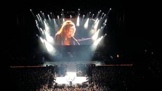 """Aerosmith """"Aerovederci Tour"""""""